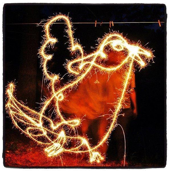 bird-sparkler