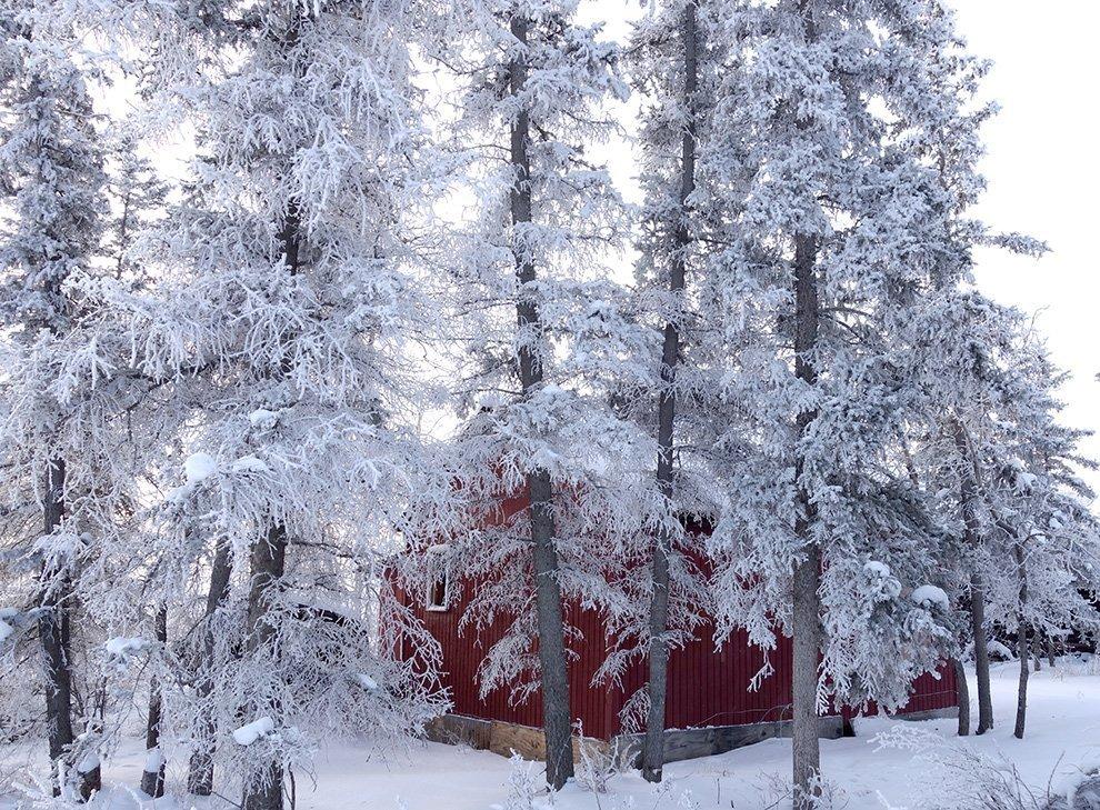 Ayumi_Horie_Fort_Yukon