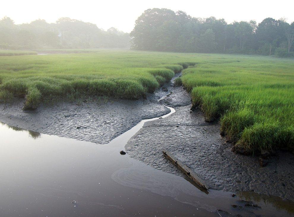 fore_river_sanctuary